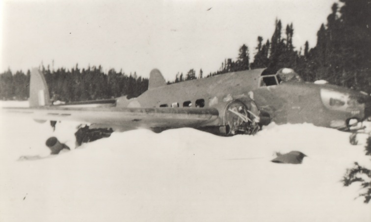The wreck of a plane in a snowbank. There are trees in the background.