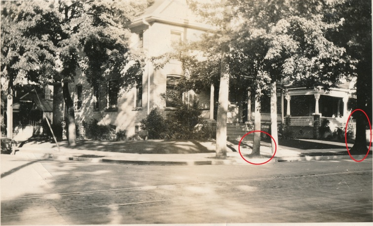 A house behind a tree and a hydro pole. There are two red circles indicating the Silver Maple trees.